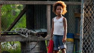 Kino: Beasts of the Southern Wild (12): 06.01.2016 22.10
